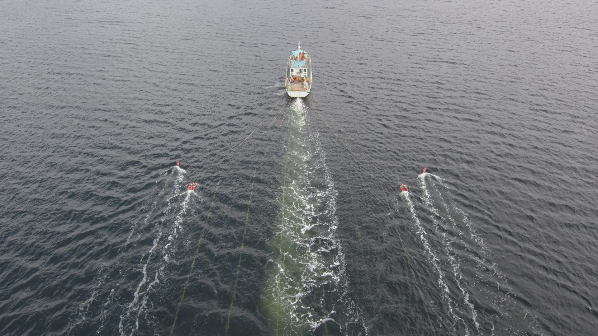 SborEx Nav